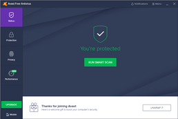 Avast Internet Security Interface